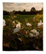 Hibiscus At Sunrise  Fleece Blanket