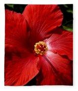 Hibiscus Landscape Fleece Blanket