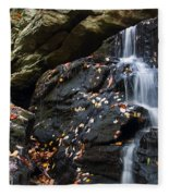 Hidden Falls 1 Fleece Blanket