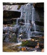 Hidden Falls 6 Fleece Blanket