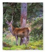 Highland Stag Fleece Blanket