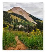 Hiking In La Sal Fleece Blanket