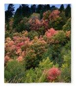 Hill Side Colors Fleece Blanket