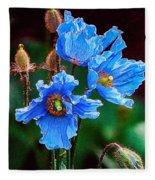 Himalayan Blue Poppy Flower Fleece Blanket