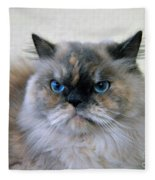 Himalayan Persian Cat Fleece Blanket