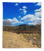 Hint Of Spring Green Fleece Blanket