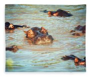 Hippopotamus Group In River. Serengeti. Tanzania Fleece Blanket