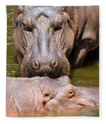 Hippopotamus In Water Fleece Blanket