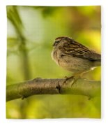 His Eye Is On The Sparrow Fleece Blanket