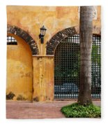 Historic Colonial Courtyard In Colombia Fleece Blanket