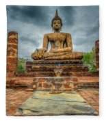 Historical Park Fleece Blanket