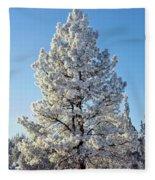 Hoar Frost Ponderos Pine Tree, Sundance Fleece Blanket
