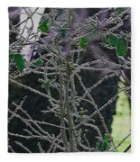 Hoars Frost-featured In Nature Photography Group Fleece Blanket