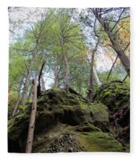 Hocking Hills Moss Covered Cliff Fleece Blanket