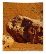 Holding The Boulder In Fleece Blanket
