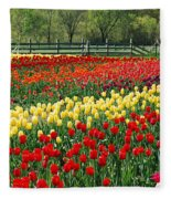 Holland Tulip Fields Fleece Blanket