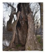 Hollow Tree At Mather Mill Fleece Blanket