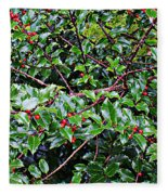 Holly Bush - Fleece Blanket