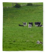 Holsteins Fleece Blanket