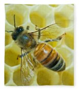 Honey Bee In Hive Fleece Blanket
