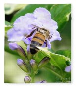 Honey Bee On Lavender Flower Fleece Blanket