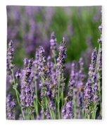Honeybees On Lavender Flowers Fleece Blanket
