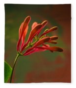 Honeysuckle Blooms Unopened 1 Fleece Blanket