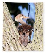 Hooded Merganser Duck Fleece Blanket