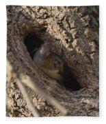 Hooded Merganser In The Knot Hole  Fleece Blanket
