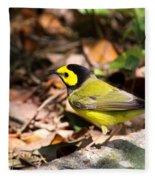 Hooded Warbler - Img_9349-001 Fleece Blanket