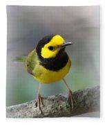 Hooded Warbler - Img_9371-001 Fleece Blanket