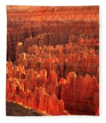 Hoodoos Basin Fleece Blanket