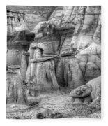 Hoodoos Bisti/de-na-zin Wilderness Monochrome Fleece Blanket