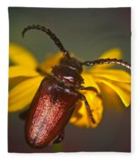 Horned Beetle Fleece Blanket