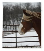 Horse 09 Fleece Blanket