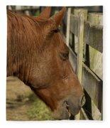 Horse 31 Fleece Blanket