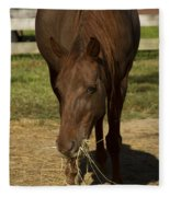 Horse 32 Fleece Blanket