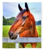 Horse Closeup Fleece Blanket