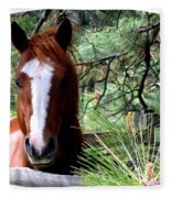Horse Country Fleece Blanket