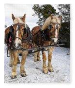 Horse Drawn Sleigh Fleece Blanket
