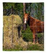 Horse Eating Hay In Eastern Texas Fleece Blanket