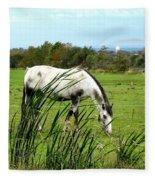 Horse Grazing In Field Fleece Blanket