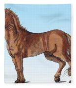 Horse Historiae Animalium  Fleece Blanket