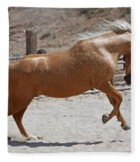 Horse Jumping Fleece Blanket