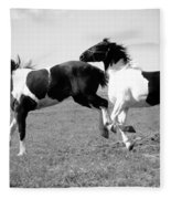 Horse Play Fleece Blanket