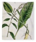 Horseradish Fleece Blanket