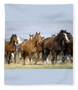 Horses-animals-2 Fleece Blanket