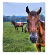 Horses In A Field Fleece Blanket