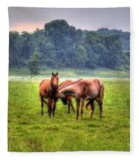Horses Socialize Fleece Blanket