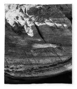 Horseshoe Bend - Arizona Fleece Blanket